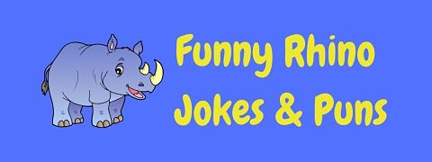 Header image for a page of funny rhino jokes and puns.